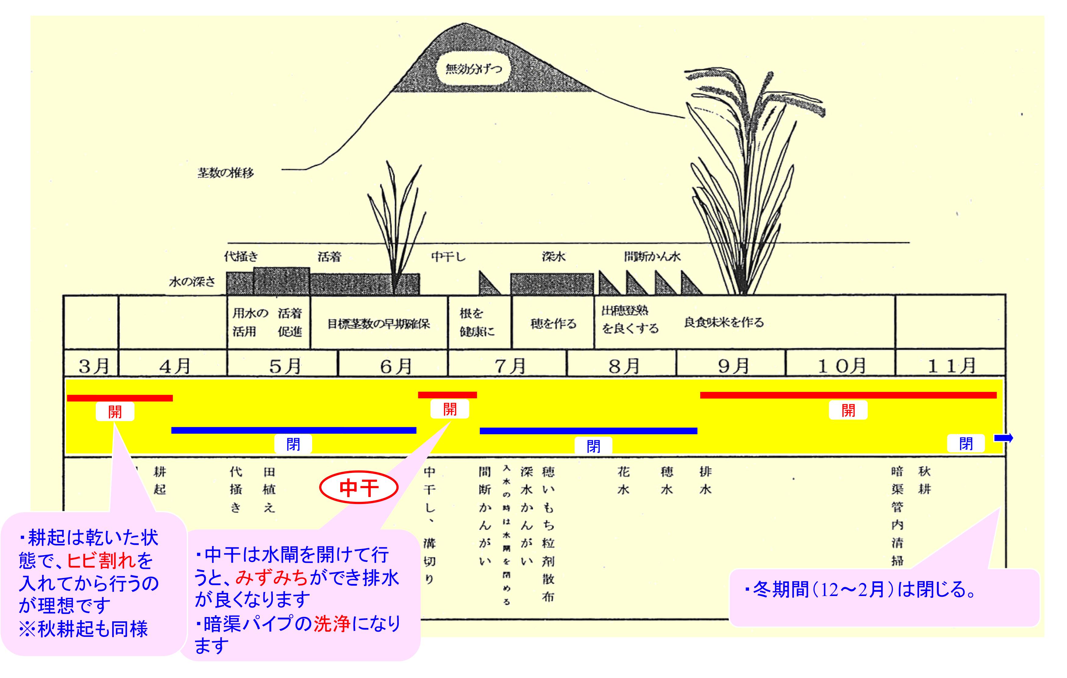 INKkouhouBIMG19